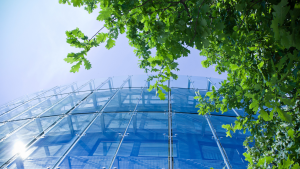Read more about the article Four Ways Your Business Can Be More Green